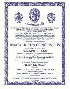 cartel inmaculada 15